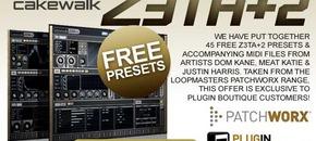 590x332 zeta free presets