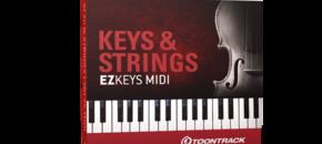 Keysstrings ezkeysmidi gen2