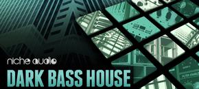 Nichedarkbasshouse1000x512