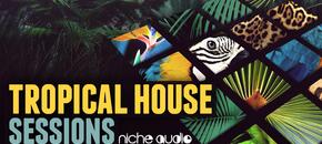 Niche tropical house 1000 x 512