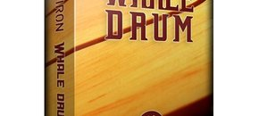 Whale drum pluginboutique