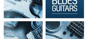 Rv deep blues guitars 700 x 700 pluginboutique