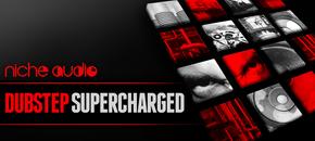 Niche dubstep supercharged 1000 x 512