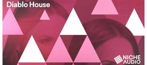Niche samples sounds diablo house 1000 x 512 new pluginboutique