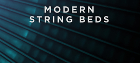 Analogstrings expansion modernstringbeds plugin boutique