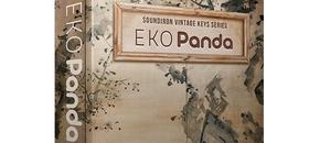 Eko panda 3d box website 1024x1024 pluginboutique